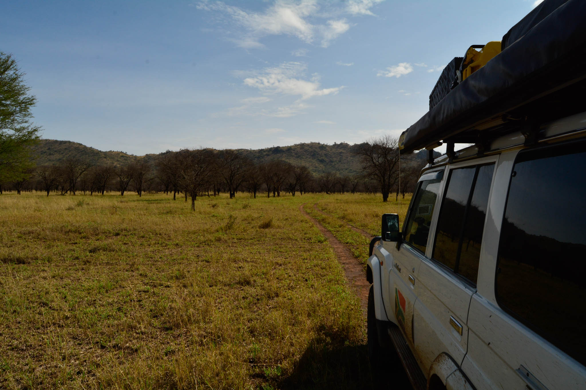 We took this circular route off the main road in Serengeti which was really quite